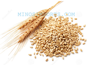 Wheat 1lb bags By: Minos imported Foods